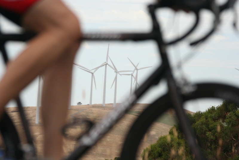 South Australia, cyclist and windmills