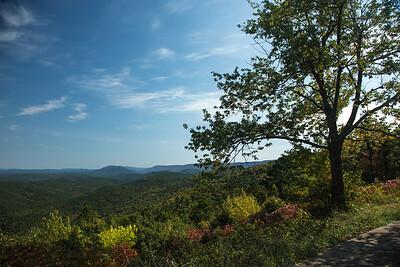 Talimina Scenic Drive.  Scenic vista.