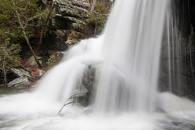 Talladega National Forest 2013