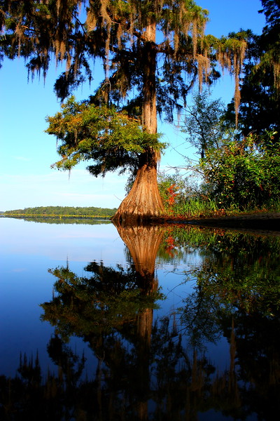 Lake Iamonia  -- click image for larger view
