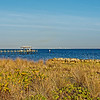 Looking Across Tampa Bay from Apollo Beach Preserve