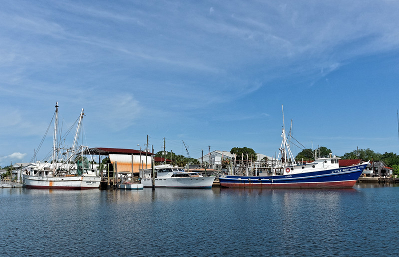 High Life and Little Brothers in Tarpon Springs