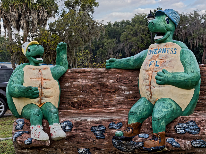 Inverness Turtle Bench Concrete Sculpture
