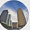 Tampa's Kiley Garden Fisheye Shot