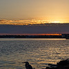 Sunrise on Dunedin Causeway