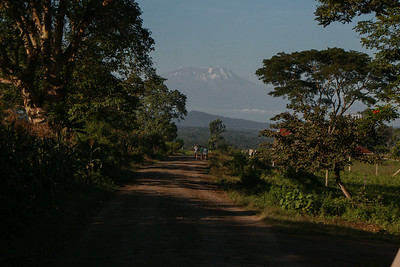 Mt. Kilamanjero Tanzania 2014 06 29.JPG