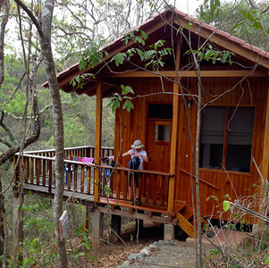 Lodge with a view into the dry forest.
