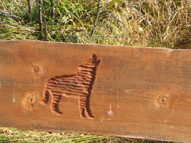 They even have a carving showing our dog doing what she loves to do best.