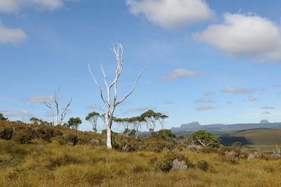 2011_Tasmania_0025