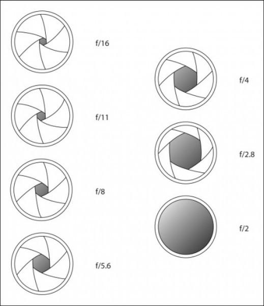 Et là, ceux qui ont suivis se demandent à quoi correspond le deuxième F dans la focale variable donc je m'explique. <br /> <br /> A 18mm, votre objectif ne pourra pas avoir une ouverture en dessous de 2,8 et à 55mm il ne pourra pas avoir une ouverture en-dessous de 4,5. <br /> <br /> Entre 18mm et 55mm (la plage focale), l'ouverture maximale dépendra de la focale choisie.<br /> <br /> L'ouverture d'un objectif est très importante car c'est elle qui va vous permettre de jouer sur la profondeur de champ et donc sur l'étendue de la zone de netteté par rapport à votre mise au point sur le sujet.