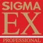 Sigma :<br /> <br /> ASPH : ASPherical Lens (lentille asphérique corrigeant la distorsion)<br /> APO : APOchromatic (objectif avec lentilles permettant une correction renforcée des aberrations chromatiques)<br /> EX : Excellence (haut de gamme Sigma)<br /> DL : DeLuxe (entrée de gamme Sigma)<br /> DC : Digital Camera (dédié aux reflex numériques à petit capteur)<br /> DF : Dual Focus (dédié aux reflex numériques à capteur APS-C. Leur conception améliore le rendu colorimétrique, tout en réduisant les lumières diffuses liées aux réflexions de la lumière sur le capteur, et corrige les aberrations chromatiques)<br /> DG : DiGital (objectif pour le numérique et l'argentique mais optimisé pour le numérique)<br /> HS-APO : High Speed APO (objectif à haute vitesse proposant une correction renforcée des aberrations chromatiques)<br /> HSM : Hyper Sonic Motor (moteur autofocus rapide et silencieux)<br /> IF : Inner Focus (mise au point interne)<br /> OS : Optical Stabilizer (système de stabilisation d'image)<br /> RF : Rear Focus (mise au point effectuée par le déplacement du groupe de lentilles arrière)<br /> SLD : Super Low Dispersion (objectif composé de lentilles à très faible dispersion)