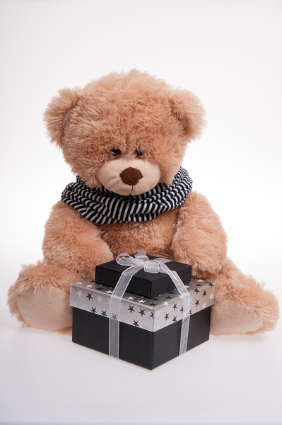 teddy bear with a Christmas present isolated on white background