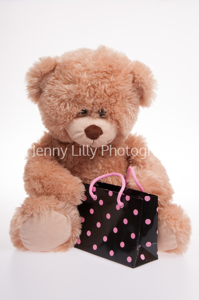 teddy bear with a spotty bag isolated on white background