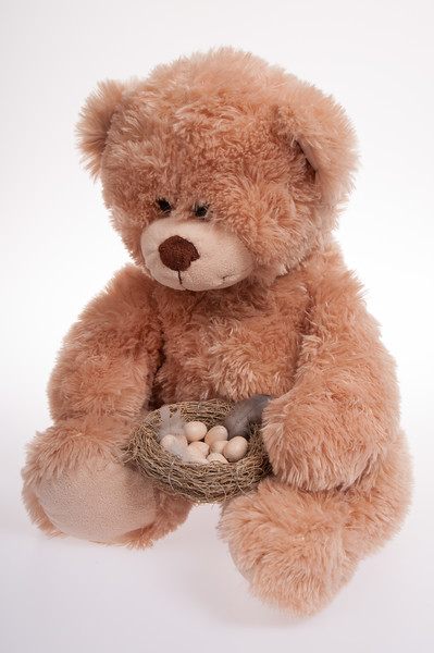 Easter teddy bear, with basket of eggs isolated on white background