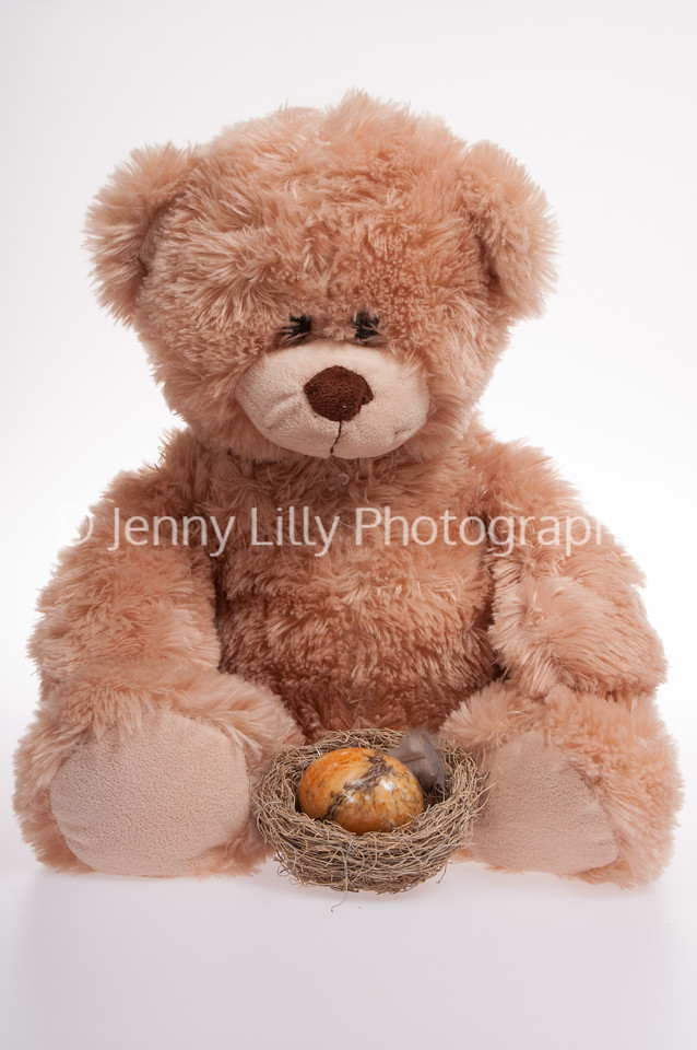teddy bear with an Easter birds nest and a coloured egg, isolated on white background