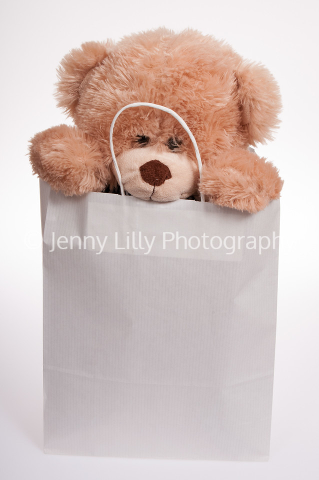 teddy bear in a paper bag, peeping over the top, isolated on white background