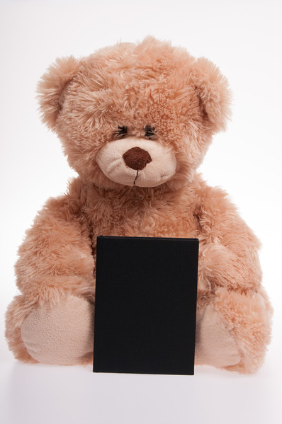 teddy bear with a black book isolated on white background