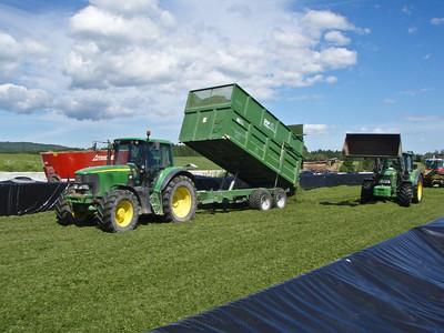 Grashøsting-8