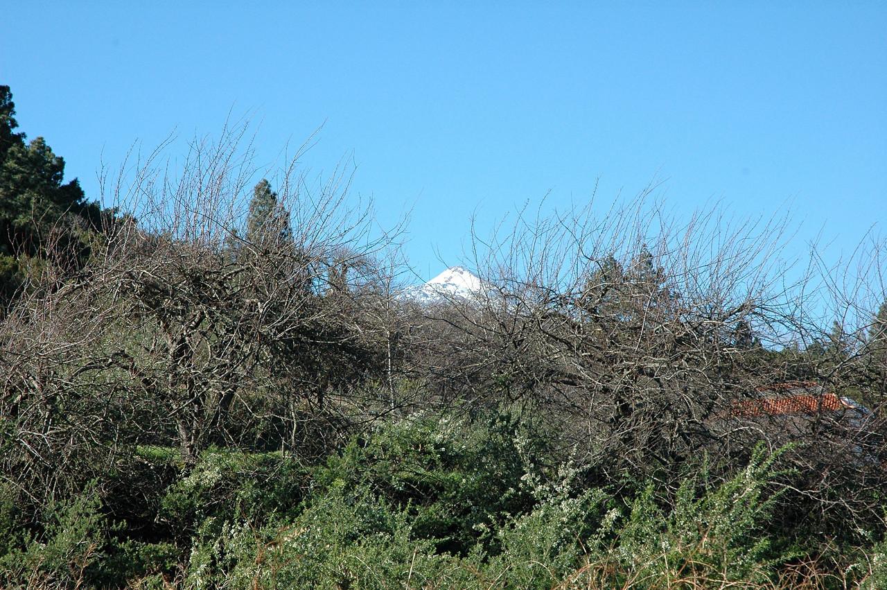 hier koennen wir schon die verschneite spitze des pico de teide (mount teide) erkennen