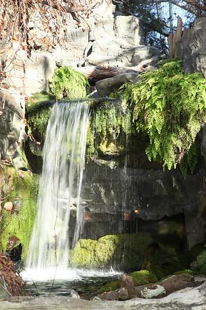 Waterfall in the Aquarium