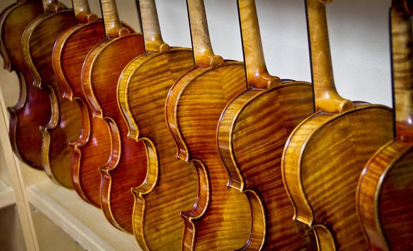 Terra Nova Violin Shop