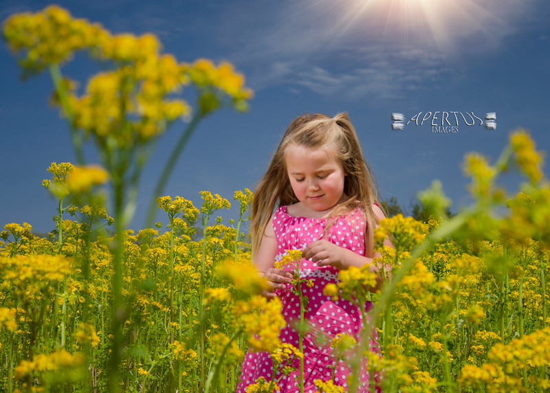 """<font size=""""4"""" color=""""darkred"""">Written by Heather, mother of Hayden (Greenfield, IL)</font> <br> <br> <font size=""""3"""">We had such a fun photo session to capture images of my lively little girl.  <br> <br> It was a beautiful spring day. Though it was a little early for my taste, Ben promised that the early morning light would be worth it (he was so right!). He chose the wonderful location of Elsah which is full of scenic spots and a nearby field of flowers perfect for the springtime setting.  <br> <br> Hayden is not a shy child. Even so, I was surprised at how long she was willing to do these pictures! She was very at ease with Ben from the start--having a good time, even suggesting where and how the next picture might be taken. In the end, we now have not just a couple, but several beautiful images.  <br> <br> I love that Ben is not just about capturing every image with a smile, but more about capturing the individual's personality. He even provided great tips before the session to assist. His care and passion shows in the quality of his work. And now, I see some family or mother/daughter sessions in our future. Thank you Ben! </font>"""