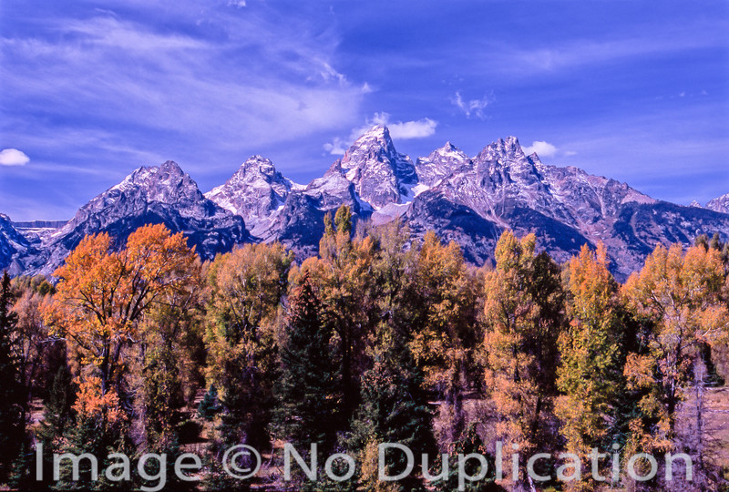 Teton Mountain Fall Colors
