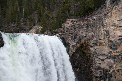 Yellowstone NP - Lower Falls of the Yellowstone River