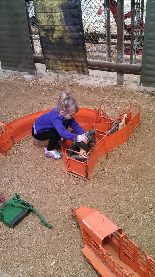 Laney plays with the toys in the livestock barn.