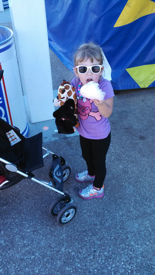 New stuffed animals and cotton candy. What's not to love?!