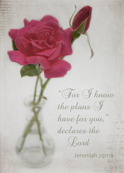 Jeremiah 29:11a