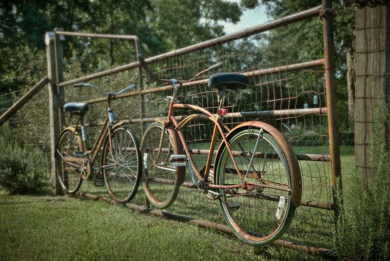 Old Bike Gate _ Taken at my sister's house. Melanie Green