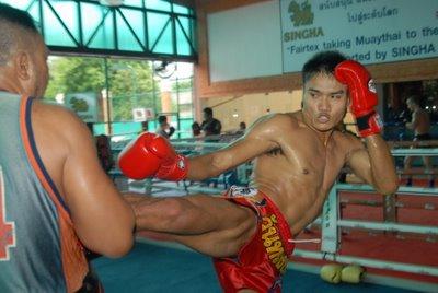 Khem Kicking pads