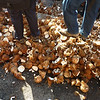 People throw and break thousands of coconuts ahead of the chariot in order to cleanse the streets before it passes.  It smells really good, but makes the tarmac slippery (it's probably good for the soles of your feet if you can only avoid the shells!)