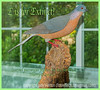 E is for Extinct - Carved Passenger Pigeon