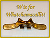 W is for Whatchamacallit!