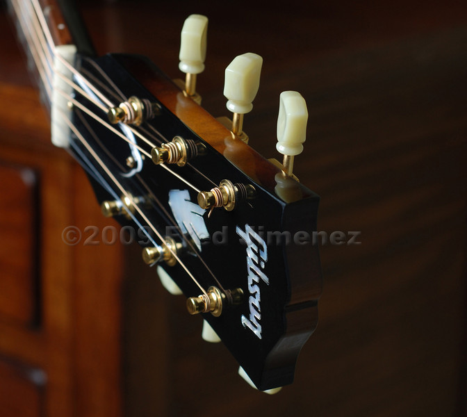 Gibson Guitar.  Used an off camera stobe.