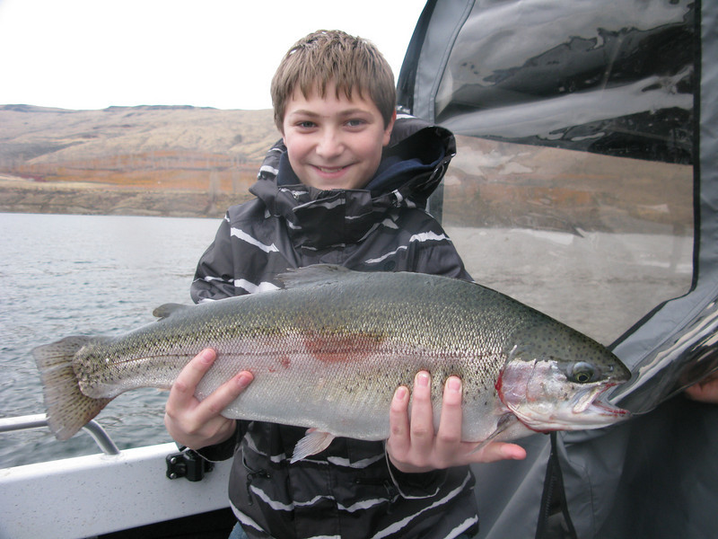 8lb Triploid Rainbow from Rufus Woods Lake. (Columbia River) Thanksgiving 2009. Colton!