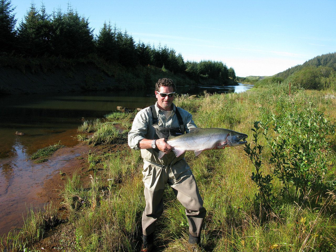 Silver Salmon on fly Kiklukh River Alaska, Sept 2010.