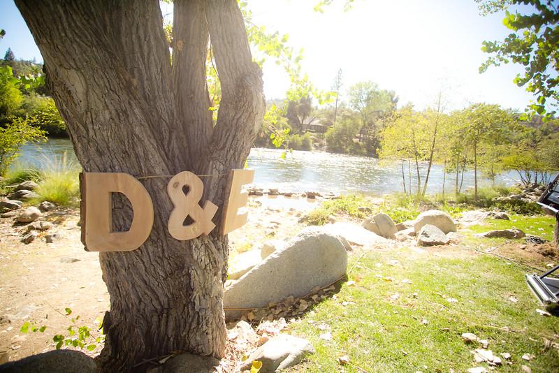 D&E-239