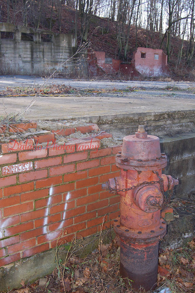 Whats left of the Print & Dye Works.