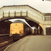 Goole sees the arrival of 55016 with the 16 30 Hull to Kings X on 15/04/81 - 6 weeks prior to HST takeover.