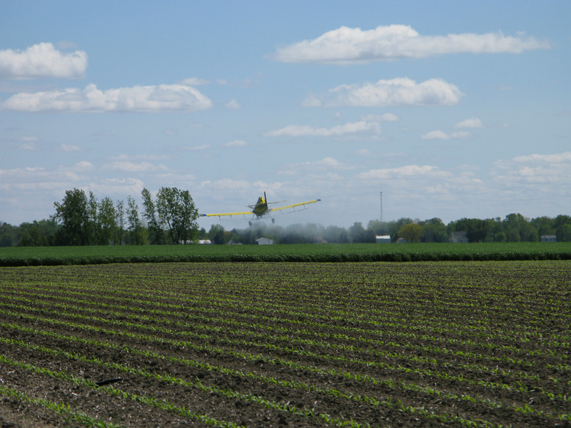 Kyle Lund's Wheat gets sprayed in June of '08