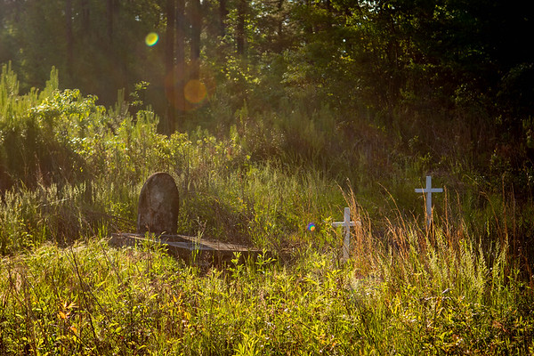 The Forgotten Cemetery