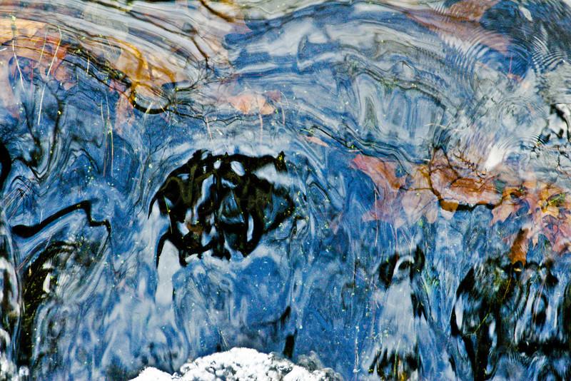 Fast Water-Stoney Brook Audubon