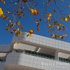 Getty and Fall Foliage