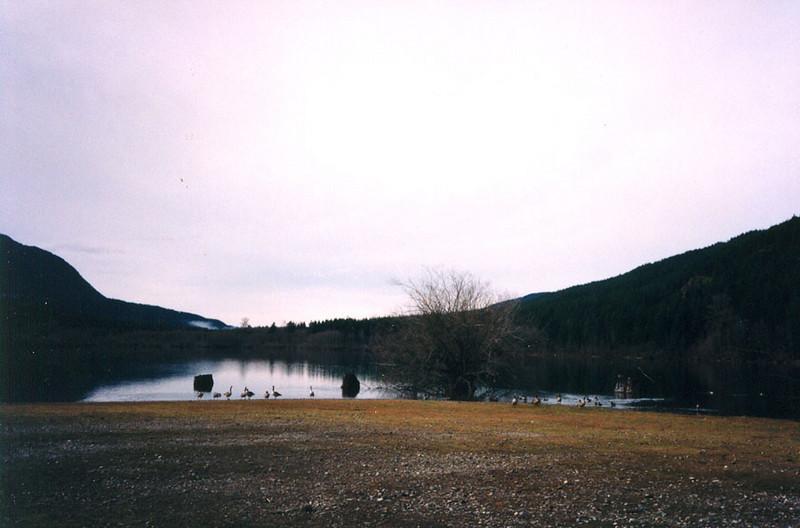 52 Rattlesnake Lake