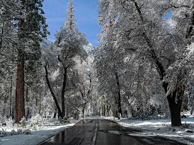 road through winter wonderland