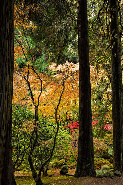Portland, Oregon Japanese Garden