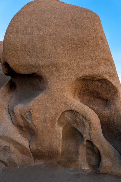 Joshua Tree Skull Rock